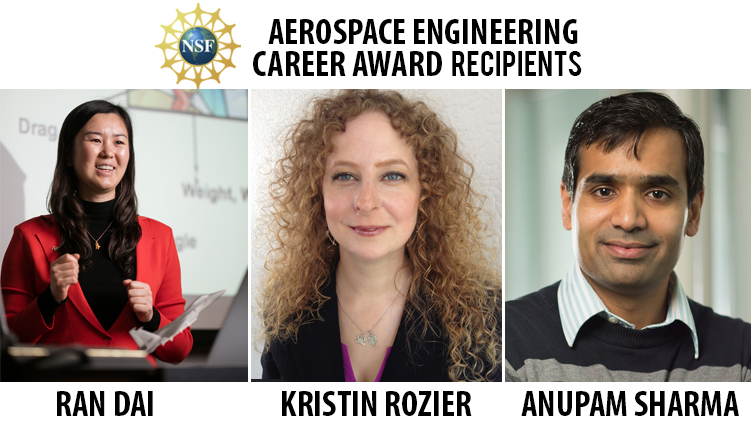 NSF Career Awards